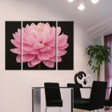 Flower Canvas Printing, Canvas Print, Art Wall Printing 3 Pieces