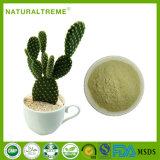 Top Quality Cactus Plant Extract Powder with Factory Price