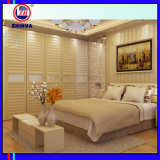 Good Quality Built-in Wardrobe with Aluminum Frame (for bedroom)