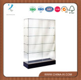 Full Vision Frameless Wall Case with Lock and Light