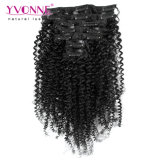 100% Brazilian Remy Human Hair Clip in Hair Extension