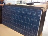 High Quality Poly 310W Solar Panel Black Frame (AE310P6-72)