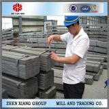 Cheap Building Materials GB Standard Flat Bar