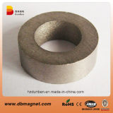 Ring Rare Earth SmCo Magnets for Motor