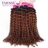 Most Fashion Ombre Hair Brazilian Human Hair Weft