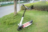 Aluminum Electric Portable Bike with 400W Brushless Motor