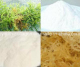 Carrageenan, Seaweeds Extract Natural), Food Additive, Food