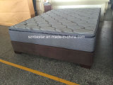 Container Loads of Comfortable Fabric Spring Mattress