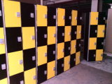 Waterproof Phenolic Compact Laminate Beach Locker Cabinet