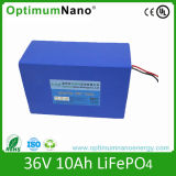 Small Size 36V 10 Ah Battery LiFePO4 Electrical Bike Battery