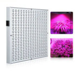 45W LED Hanging Grow Light for Greenhouse Hydroponics