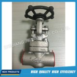 Forged Stainless Steel F316L Globe Valve