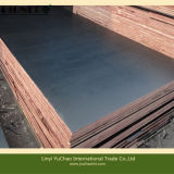 9 mm 12mm 15mm 18mm Black Film Faced Plywood for Southeast Asia Market