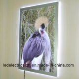 LED Light Box Supply Ultra Thin LED Stencil Board