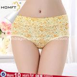 Ladies Seamless Cotton Cute Animal Image Printing Underwear Colorful Lovely Girls Underwear Panties
