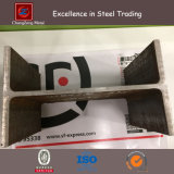 Structural Carbon Steel Hot Rolled Section H Beam (CZ-H07)