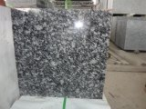 Polished White Spray Granite Tile