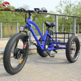 Fashion 48V 500W Adult Fat Tire Cargo Tricycle Three Wheel Electric Tricycle with Pedal