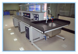 All Steel Suspension Type Lab Island Bench with Sink