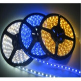 12V RGB SMD5050 60d LED Strip Light