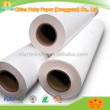 Supply Low Price 45g Plotter Paper Rolls