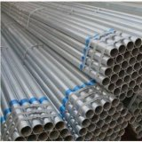 Greenhouses Pipe with 25~36mm Diameter
