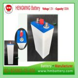 Super Quality 1.2V 120 NiCd Battery Ni-CD Battery Nickel Cadmium Battery