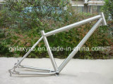 Hot Sale Good Flexibillity Titanium Bicycle Frame for Gr9