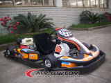 China Racing Go Karts for Sale