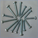 Galanized Pan Head Zinc Coated Self-Tapping Screws