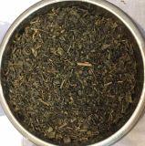 Chinese Gunpowder Green Tea 3505D