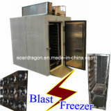 -35degree C Stainless Steel Blast Freezer Model (BF-2)