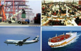 Consolidate Lowest Logistics Freight Fee From China to Dubai Shipping
