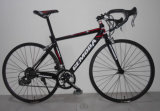 700c 14 Speed Alloy Sport Bicycle, Racing Bike, Road Bike