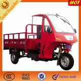 China Factory Closed Cabin Adult Three Motorcycle Tricycle