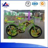 China Manufacturer Kids Bike and Cars