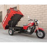 3 Wheel Motorcycle, 3 Wheeler, Tricycle, Tri-Motorcycle