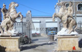 Marble Stone Animal Carving Horse Sculpture for Garden Decoration