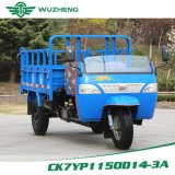 Right Hand Drive Dump Waw Diesel Tricycle From China for Sale