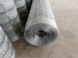 Cheap Galvanized Deer Farm Fencing Wire Net for Sale