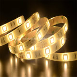 High lumen Indoor SMD5050 LED Strips with CE