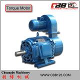 Electric Torque Motor