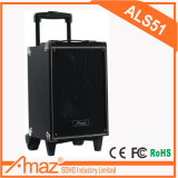 Hot Sale Wood Case Trolley Speaker with Wireless Microphone