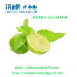 Alfaker Lemon Mint Concentrate Flavors for Hookah in Arab