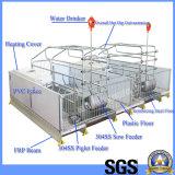 Pig Equipments--Farrowing Crates