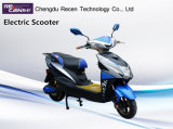 800W Fashion Style High Speed Long Range Cheap Adult Electric Motorcycle for Sale
