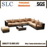 Rattan Outdoor Furniture/Plastic Furniture/Wicker Sofa (SC-B8915)