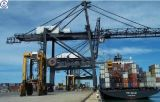 Consolidate Container Service for Sea Shipping