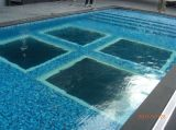 Acrylic Swimming Pool/Clear for Life Acrylic Aquarium/Swimming Pool