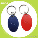 Kea10 Hitag S2048 Nxp Ht Keychains for RFID Attendance System (GYRFID)
